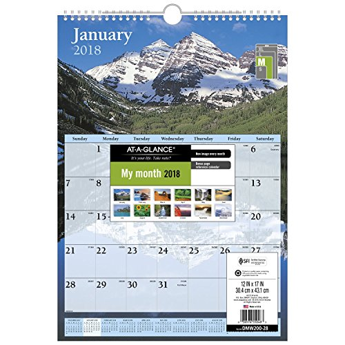 "AT-A-GLANCE Wall Calendar, January 2018 - December 2018, 12"" x 17"", Scenic, White (DMW20028)"