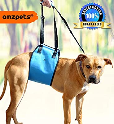 Dog Lift Harness by AMZpets - Support Sling Helps Dogs With Weak Front or Rear Legs Stand Up, Walk, Get Into Cars, Climb Stairs. Best Alternative to Dog Wheelchair