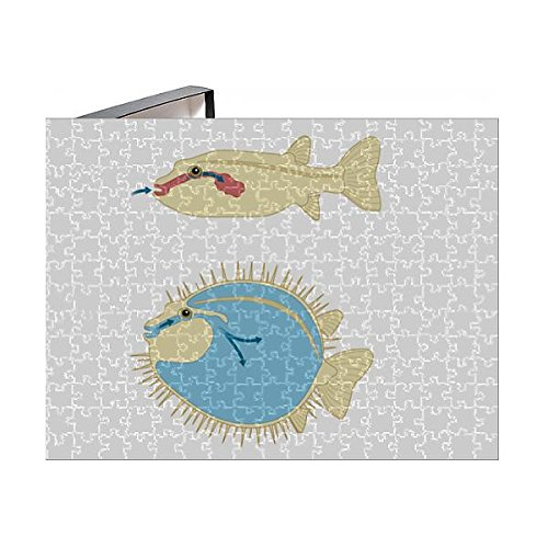 Media Storehouse 252 Piece Puzzle of Digital Cross Section Illustration of Porcupine Fish and Puffer (13549439) ()