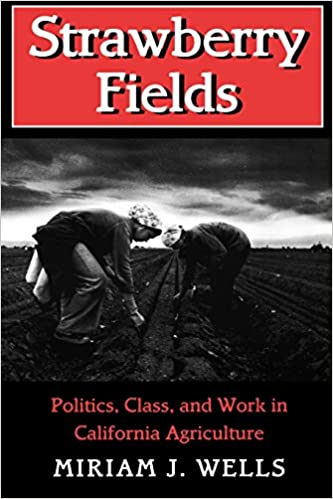 Strawberry fields politics class and work in california strawberry fields politics class and work in california agriculture the anthropology of contemporary issues miriam j wells 9780801482793 fandeluxe Choice Image