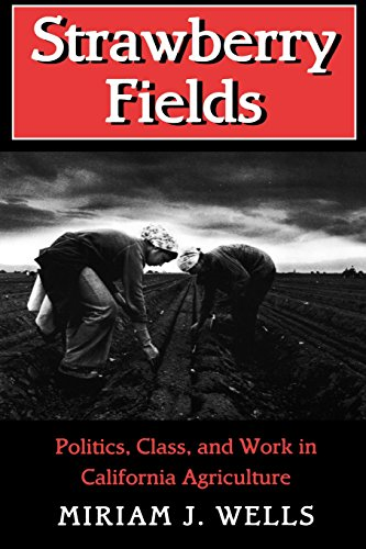 Strawberry Fields: Politics, Class, and Work in California Agriculture (The Anthropology of Contemporary Issues) by Miriam J. Wells