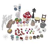 LJY Fairy Garden Dollhouse Decor Miniature Ornament DIY Kit (Pack of 52 Units)