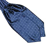 Froomer Mens Ascot Blend Polka Dot Ties Silk Cravat