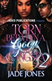 img - for Torn Between a Goon and a Gangsta 2 book / textbook / text book