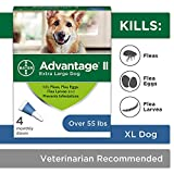 Flea and Lice Treatment for Dogs, Over 55 lb, 4 do...