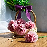 Decorlife Artificial Silk Peony Flower 5 Heads Flower Bridal Wedding Bouquets for Farmhouse Home Wedding Party Hotel Decor (Pink)