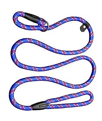 Coolrunner Pet Dog Whisperer Cesar Slip Training Leash Lead Collar
