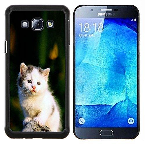 STPlus Gato en una caja Animal Carcasa Funda Rigida Para Samsung Galaxy A8 #8