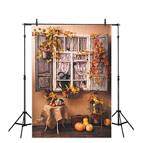 Allenjoy 5x7ft Autumn Backdrops for Photography Fall Outdoor Vintage Rustic Patio Maple Leaves Thanksgiving Pumpkin Halloween Decoration on The Window Background Photo Studio Booth -