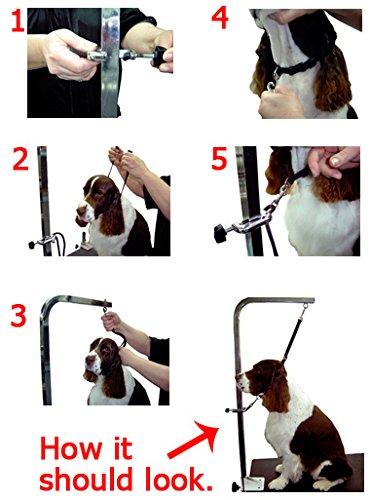 groomers helper coupon code