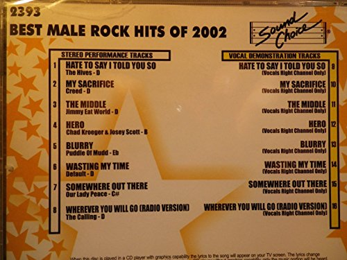 Sound Choice Star Series SC2393 Best Male Rock Hits Of 2002