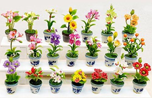 Exotic de miniaturas de jardín macetas escala 1: 12 juego de 21.: Amazon.es: Hogar