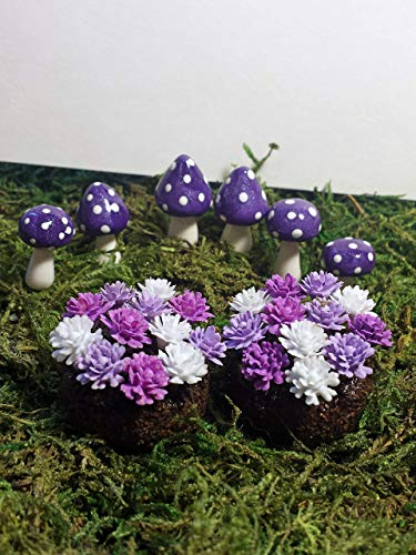 Fairy Garden Accessories. Set of 8. Purple Miniature Mushrooms and Flowers. ()