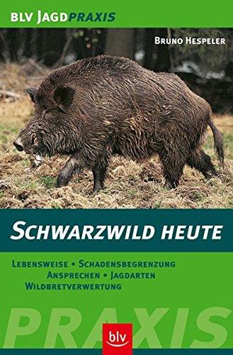 Schwarzwild heute: Lebensweise · Schadensbegrenzung · Ansprechen · Jagdarten · Wildbretverwertung (BLV Jagdpraxis)