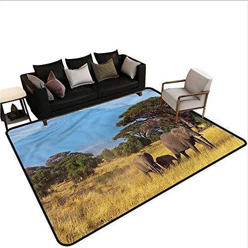 (Safari,Long Kitchen Mat Bath Carpet 36