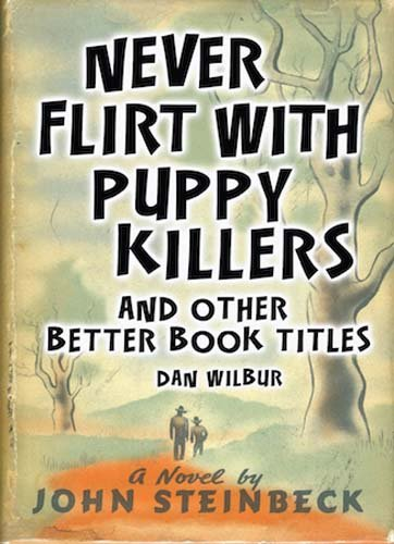 Download Never Flirt with Puppy Killers: And Other Better Book Titles pdf