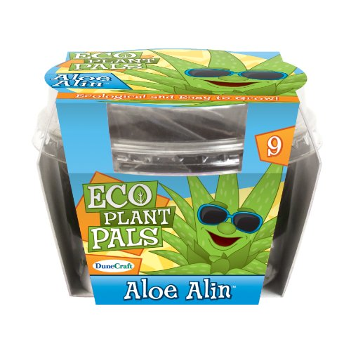 Dunecraft Aloe Alin Eco Plant Pal Science Kit