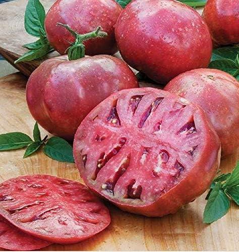 Beautytalk-Garten Bio Ochsenherz Tomatensamen Fleischtomate Gemüsesamen Tomatensamen Tomaten Saat Set BIo Samen