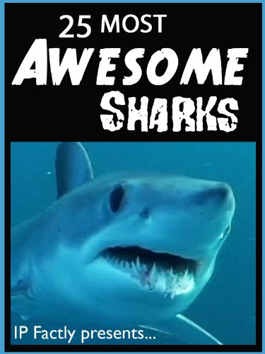 25 Most Awesome Sharks Shark Facts Photos And Video Links Amazing