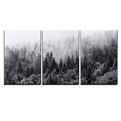 "wall26 - 3 Piece Canvas Wall Art - Misty Forests of Evergreen Coniferous Trees in an Ethereal Landscape - Modern Home Decor Stretched and Framed Ready to Hang - 16""x24""x3 Panels - High quality printed canvas stretched and stapled to durable shrink resistant frames. 1.50"" thick stretcher bars for gallery quality profile. Canvases are printed and hand stretched by professionals. - wall-art, living-room-decor, living-room - 51slDSKFncL. SS400  -"