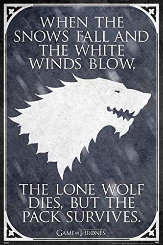 Póster Games of Thrones - The Lone Wolf (61cm x 91,5cm): Amazon.es: Hogar