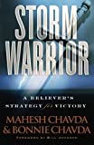 img - for Storm Warrior: A Believer's Strategy for Victory book / textbook / text book