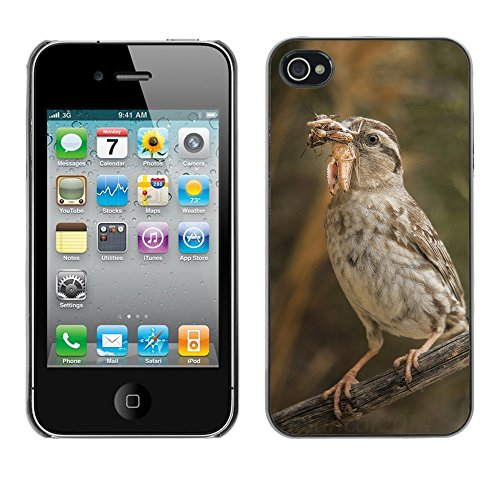 Premio Sottile Slim Cassa Custodia Case Cover Shell // F00007219 oiseau manger // Apple iPhone 4 4S 4G