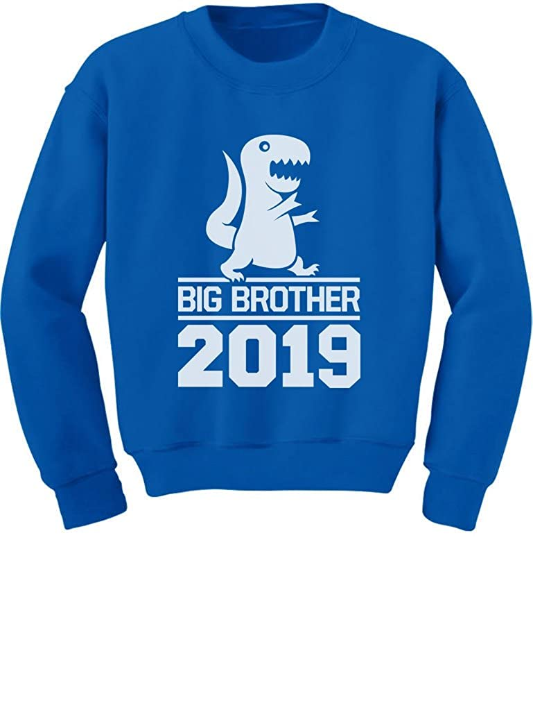 Tstars T-Rex Boy Cute Big Brother 2019 Toddler//Kids Sweatshirt