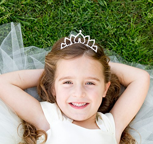 Butterfly Craze Flower Girl Bridesmaid Bridal Princess Tiara Comb]()