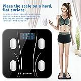 Body Weight Scale, Digital Bathroom Scale Body