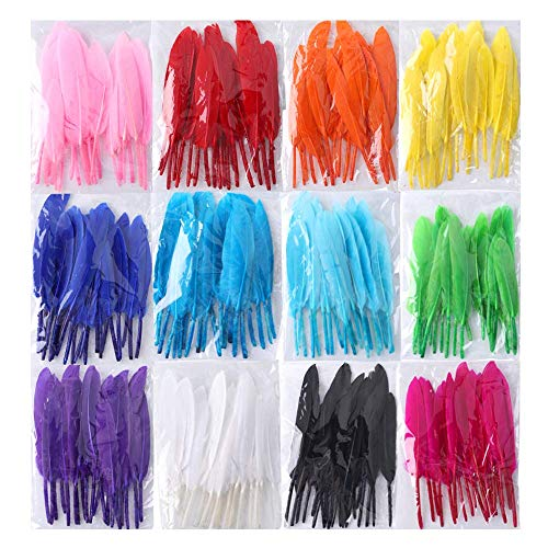 Coceca 240pcs Colorful Goose Natural Feathers 4-6inch Feathers for DIY Crafts