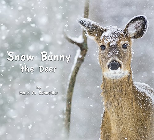Snow Bunny the Deer by Mark A. Schneider (Image #3)