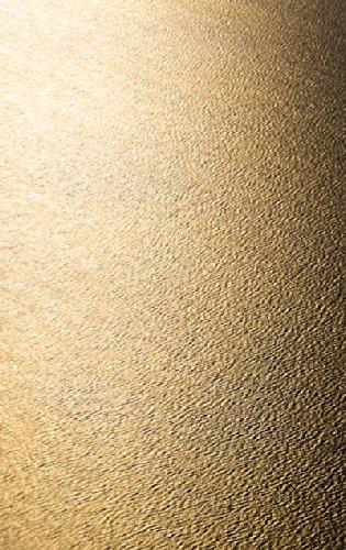 """Disagu Design Case Coque pour Apple iPhone SE Housse etui coque pochette """"Goldenes Meer"""""""