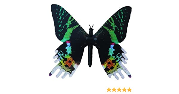 d7d5aeaf45b94 Dynalloy, Inc Aliforms Urania Moving Butterfly