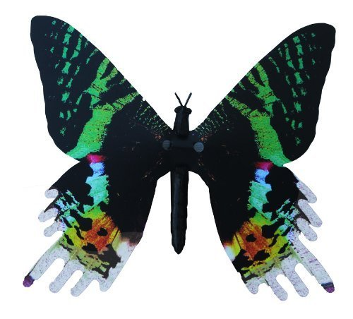 Aliforms Urania Moving Butterfly by Dynalloy Active Aliforms
