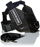 Dean & Tyler's DT Fun Chest Support ''ARSON DOG'' Harness, Medium, with 6 ft Padded Puppy Leash.