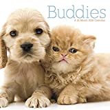 Buddies  2018 Wall Calendar
