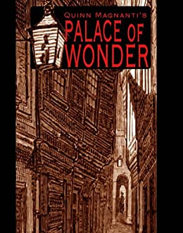 The Palace of Wonder by [Magnanti, Quinn]