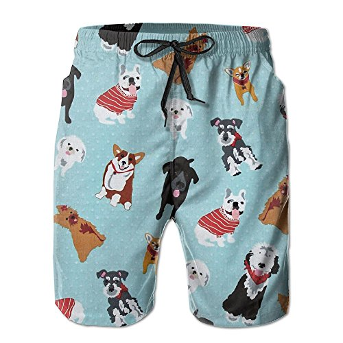 Retriever Mens Shorts - Olorw Retriever Rottweiler Havanese Sheepdog Hiking Unique Printed Colorful Beach Short Shorts