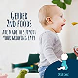 Gerber 2nd Foods Apple Strawberry Banana, 4 Ounce