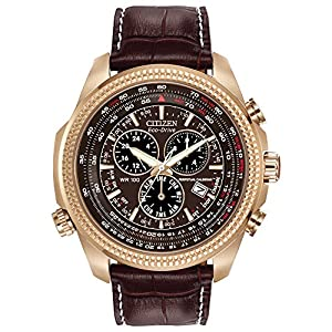 Citizen Eco-Drive Perpetual Calendar Men's Watch – BL5403-03X
