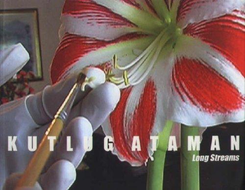 Kutlug, Ataman - Long Streams