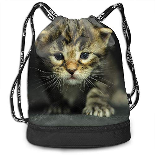 Gymsack Kitten Dressed Up Print Drawstring Bags - Simple Gym Shoulder -
