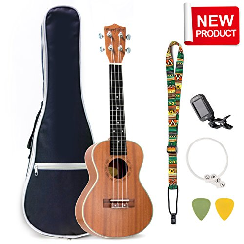 Evershine Mahogany Concert Ukulele for Beginner, 23 Inches Music Concert Smooth Sounds Ukulele, Four Professional Aquila Strings, for Kids and Friends