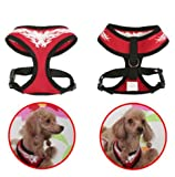 Authentic Puppia Flame Harness, Red, Large, My Pet Supplies