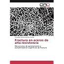 Fractura en aceros de alta resistencia: Mecanismos de agrietamiento y autoafinidad en superficies de fractura