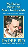 Download Meditation Prayer on Mary Immaculate in PDF ePUB Free Online
