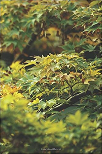 Eastern maple tree journal 365 day journal diary notebook eastern maple tree journal 365 day journal diary notebook eastward 365 volume 5 nd author services 9781539573807 amazon books sciox Choice Image