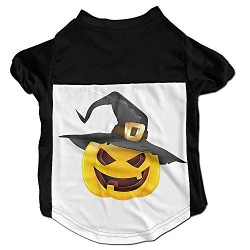 LALayton Pumpkin Face Halloween 4 Funny Pet Clothes L