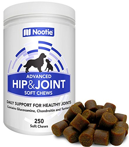 Glucosamine Chondroitin for Dogs - 250 Training Size Dog Treats - Daily Chewable Dog Glucosamine with Tumeric - MSM - Hip and Joint Soft Chews 250 ct -2 Month Supply - All Breeds and Sizes USA